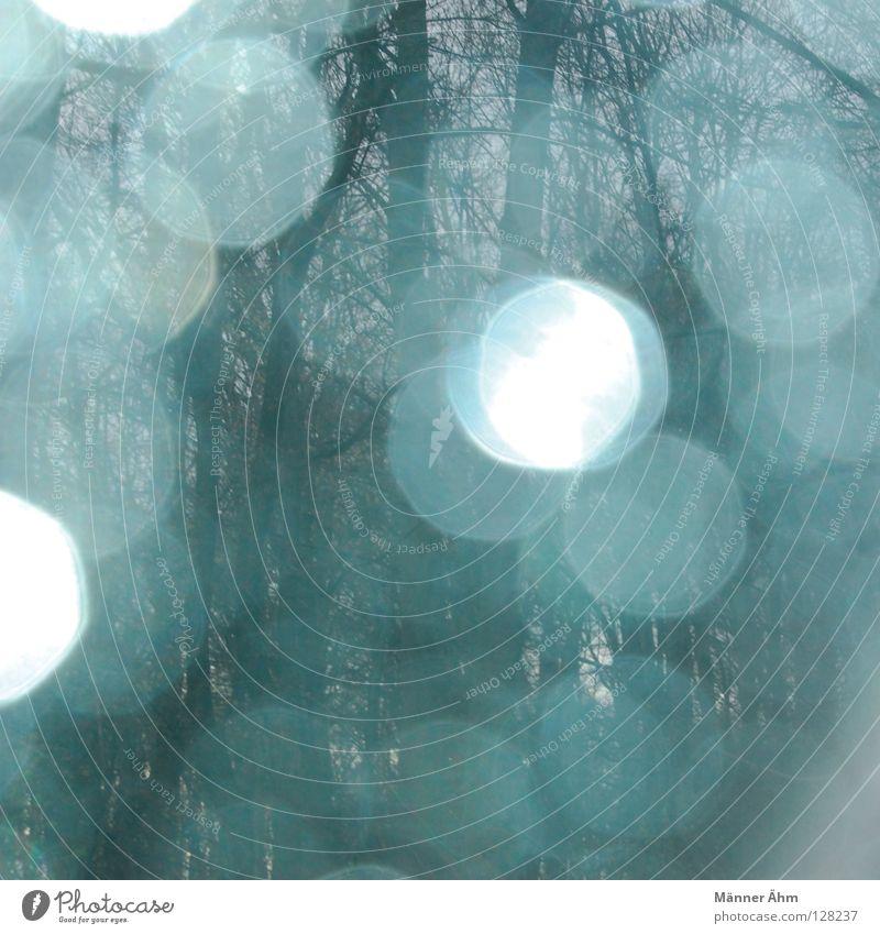 Teardrop in my eyes. Himmel blau Wasser Baum Wolken Spielen Regen Tür Glas glänzend Nebel Wassertropfen Stern (Symbol) Zukunft Trauer Vergangenheit