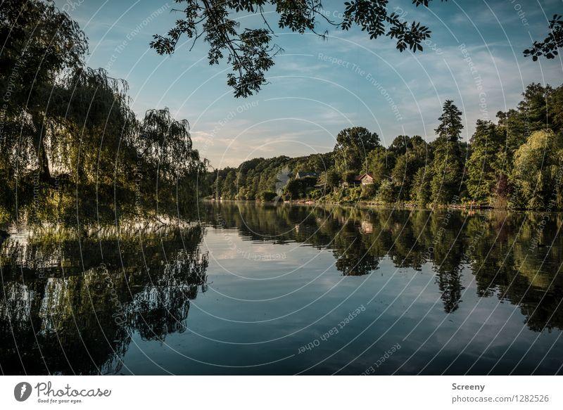 Hariksee Ferien & Urlaub & Reisen Tourismus Ausflug Natur Landschaft Pflanze Wasser Himmel Wolken Sommer Schönes Wetter Baum Seeufer nass blau grün ruhig Idylle