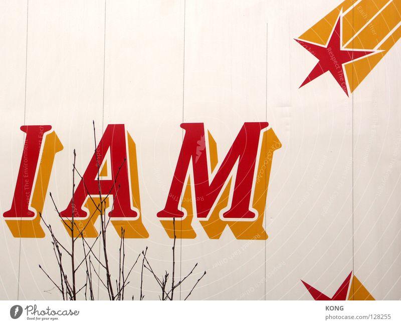 je pense donc je suis Buchstaben Wand Sternschnuppe Schriftzeichen Information weiß rot gelb Baum Kunst Kunsthandwerk Zeichen extrudiert extrusion i am Zweig
