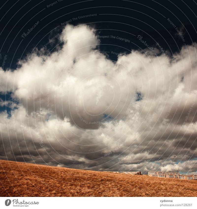 Ausbruch Natur Himmel Haus Wolken gelb Ferne Leben Wiese Bewegung Freiheit Landschaft Luft Feld warten klein gehen