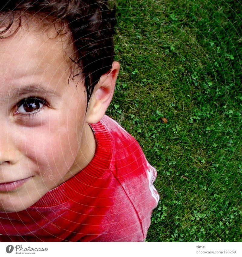 Nö! Kind Junge Wiese oben Denken maskulin Kommunizieren Konzentration Wachsamkeit skeptisch wach
