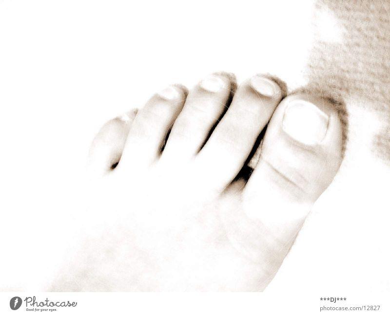 Zehen Nagel Mensch Fuß Beine Körperteile Barfuß