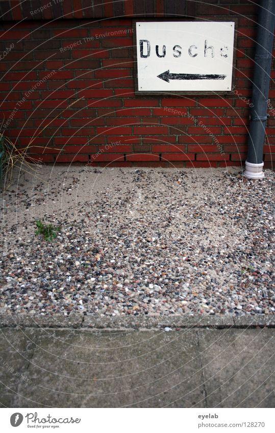 Und jetzt ab unter die... Haus Wand Gebäude Spielen Schwimmen & Baden Regen Schilder & Markierungen Schriftzeichen Hinweisschild Beton Zeichen Bodenbelag Reinigen Regenwasser Schwimmbad Pfeil