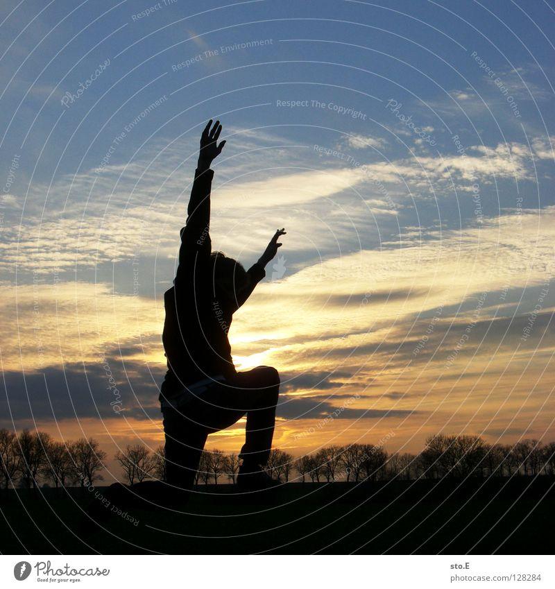 endlich feierabend Mann maskulin Kerl Körperhaltung schwarz Silhouette Allee Baum Pflanze Luft Sonne blenden Strahlung gelb Feierabend Hintergrundbild Horizont