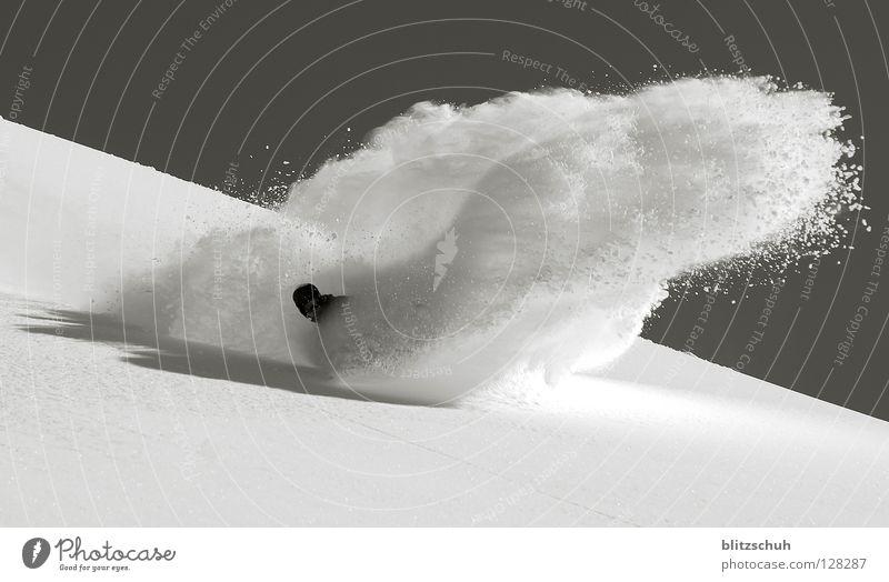 powderspray Winter Berge u. Gebirge Schnee Freiheit Kopf Linie tief Kurve abwärts spritzen Berghang Schwung Wintersport Freestyle Spray Skipiste
