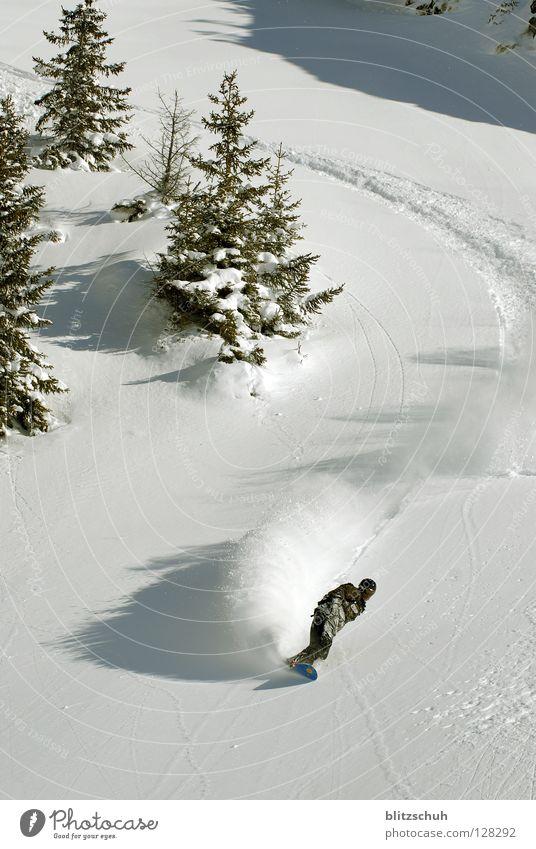 feelthespirit Winter Berge u. Gebirge Gefühle Schnee Freiheit Schweiz Kurve abwärts Schwung Snowboard Wintersport Nadelbaum Freestyle Kurvenlage Schneedecke