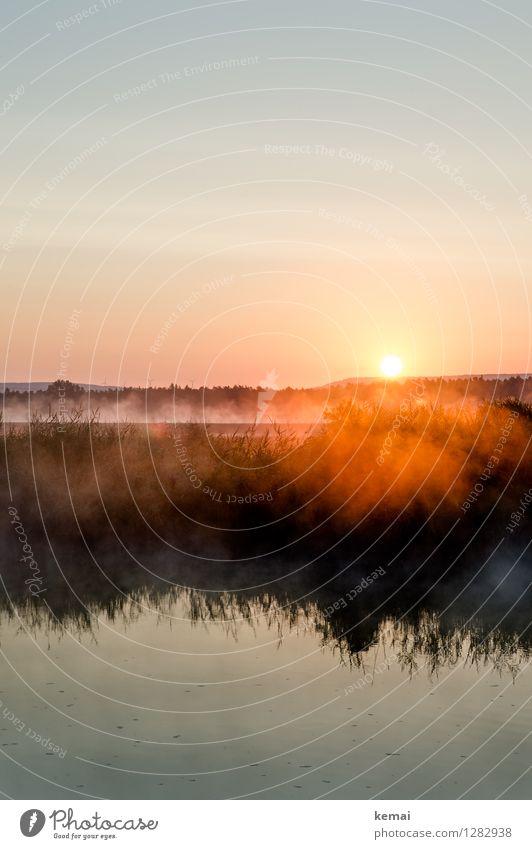 0815 AST | Sich früh regen bringt Segen Umwelt Natur Landschaft Pflanze Wasser Himmel Wolkenloser Himmel Sonne Sonnenaufgang Sonnenuntergang Sonnenlicht Sommer