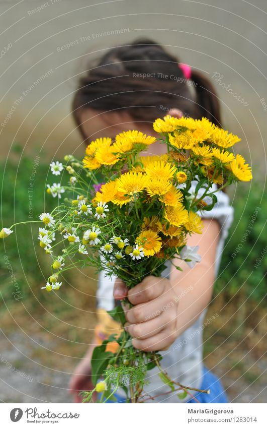 Nettes kleines Mädchen, das einen Blumenstrauß von Wildflowers hält Lifestyle elegant schön Gesundheit Gesundheitswesen Kinderspiel Ferien & Urlaub & Reisen