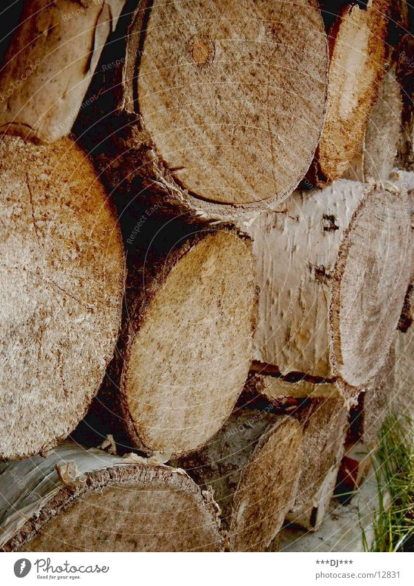 Holzstapel Holz Säge aufeinander verarbeiten fällen