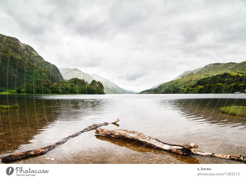 Loch Shiel in Glenfinnan Ferien & Urlaub & Reisen Tourismus Freiheit Berge u. Gebirge wandern Natur Landschaft Wasser Himmel Wolken Baum Hügel Seeufer Bucht