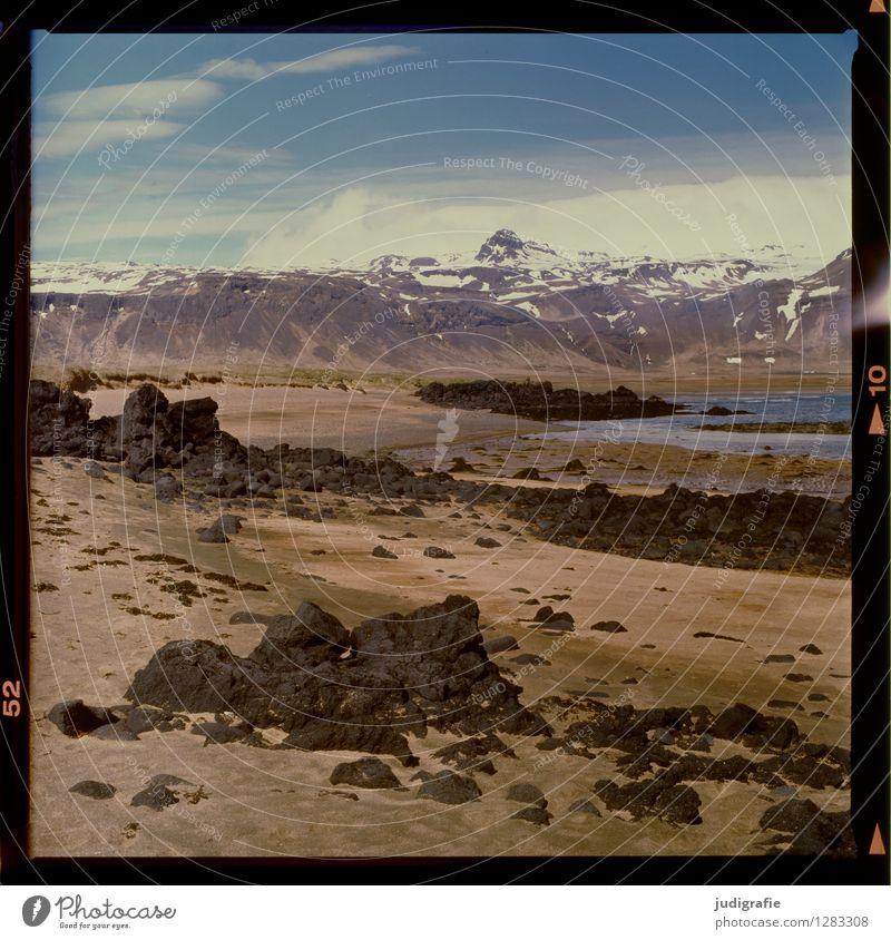 Island Umwelt Natur Landschaft Urelemente Berge u. Gebirge Schneebedeckte Gipfel Küste Strand Bucht Fjord außergewöhnlich natürlich wild Klima analog Farbfoto