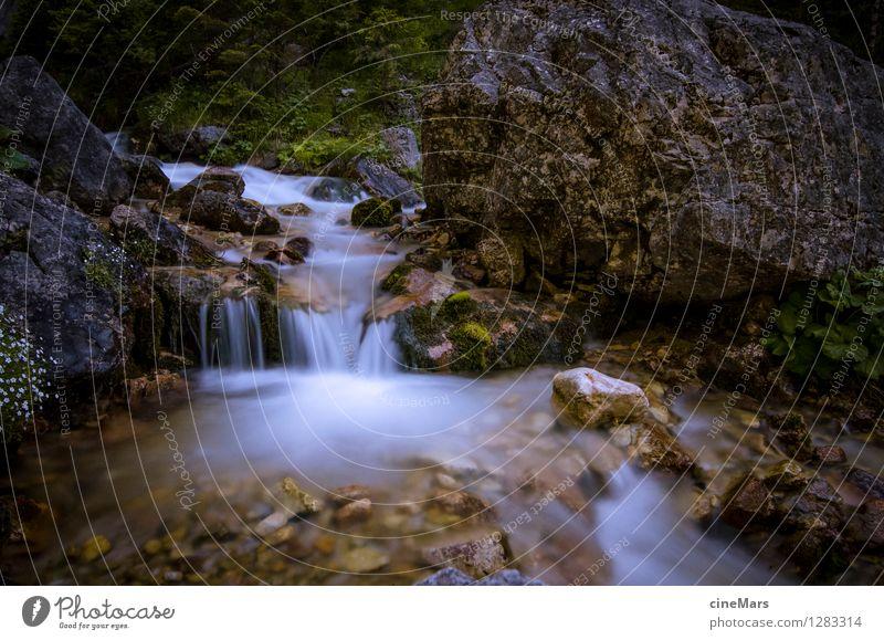 Langzeitbelichtung Bergbach Natur Landschaft Wasser Sommer Grünpflanze Alpen Berge u. Gebirge Bach träumen natürlich positiv schön grau grün weiß Zufriedenheit