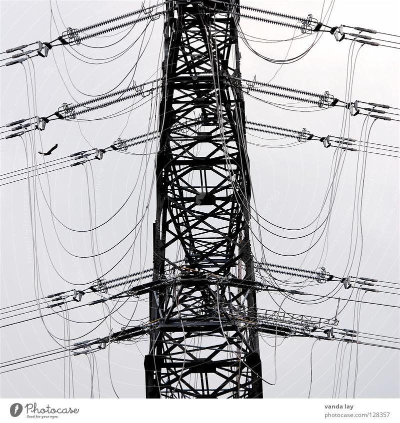 Kabelsalat Strommast elektronisch Elektrizität grau Draht Eisen Umwelt Kraft Stromausfall Bewusstseinsstörung Hochspannungsleitung Konstruktion Landweg Stahl