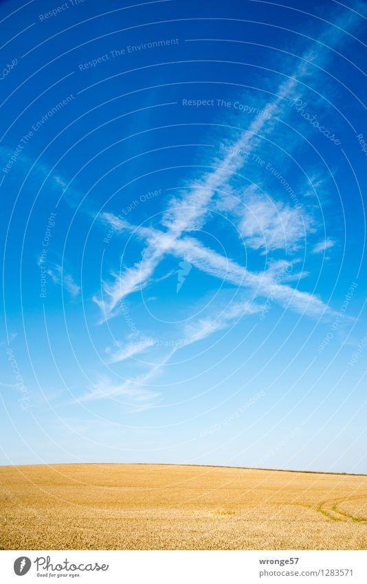 """Ein """"H"""" Himmel Natur blau Pflanze schön Sommer weiß Landschaft Wolken Umwelt gelb natürlich Horizont Luft Feld Erde"""