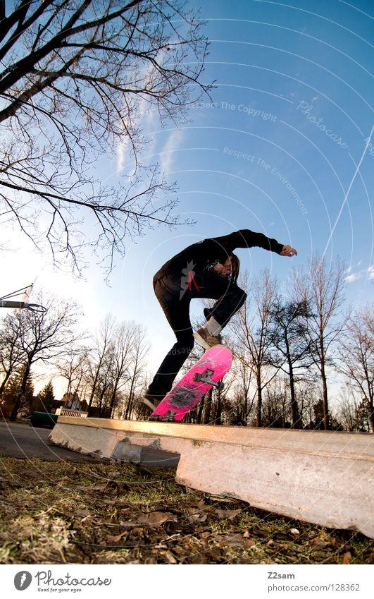 frontside boardslide I Aktion Skateboarding Zufriedenheit Kickflip Salto springen gestreift Teer Beton Licht Baum Weitwinkel Jugendliche Sport Pfütze