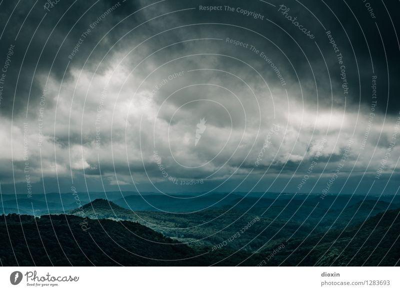 Sommerregen [2] Umwelt Natur Landschaft Pflanze Urelemente Himmel Wolken Gewitterwolken Klima Klimawandel Wetter schlechtes Wetter Sturm Regen Wald