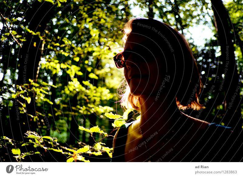 Hangin' Tree feminin Junge Frau Jugendliche Erwachsene Kopf 1 Mensch 18-30 Jahre Umwelt Natur Landschaft Sommer Baum Grünpflanze Wildpflanze Park Wald