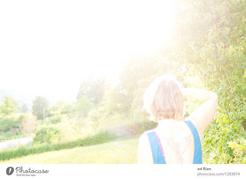 Mir geht's blendend Mensch Frau Natur Jugendliche Sommer Junge Frau Sonne Landschaft 18-30 Jahre Wald Erwachsene Wärme Wiese Glück Kopf glänzend