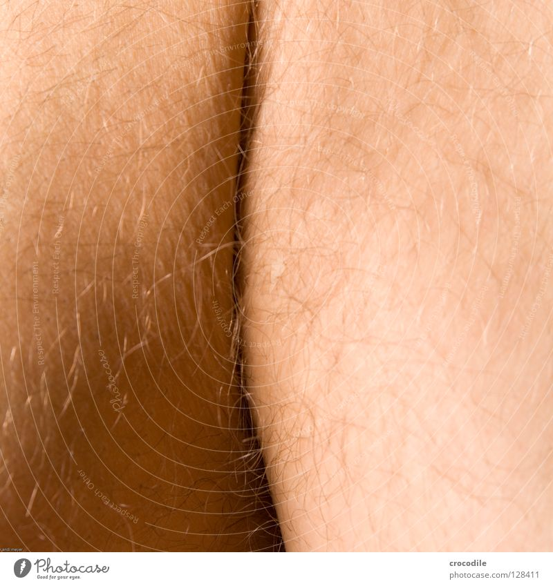 ich wär gern ein hintern ;) Mensch Mann schön Körper Haut Hinterteil Affen Falte Spalte Makroaufnahme Gorilla