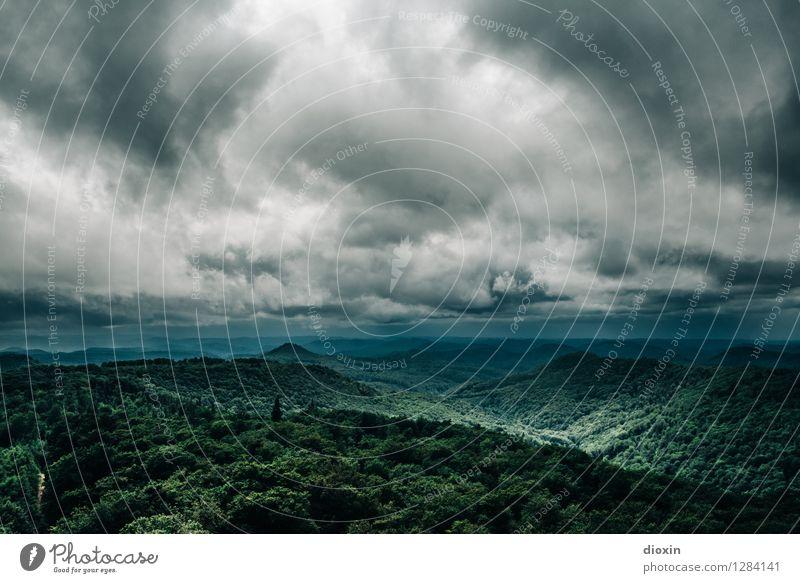Sommerregen Ferien & Urlaub & Reisen Ausflug Ferne Berge u. Gebirge Umwelt Natur Landschaft Pflanze Himmel Wolken Gewitterwolken Sonnenlicht Klima Wetter