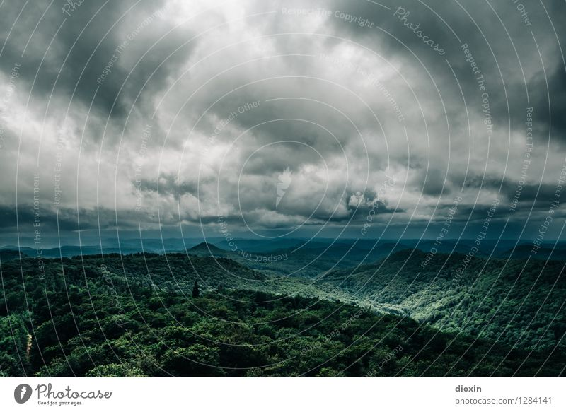 Sommerregen Himmel Natur Ferien & Urlaub & Reisen Pflanze Baum Landschaft Wolken Ferne Wald Berge u. Gebirge Umwelt Regen Wetter Wind Ausflug Klima