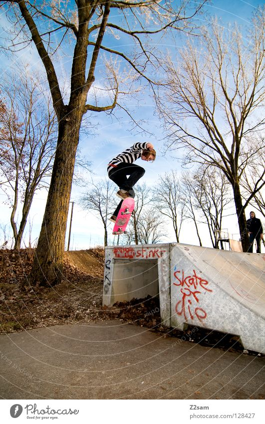 backside 180° Jugendliche Himmel Baum blau Sport springen Stil Bewegung Haare & Frisuren Wärme rosa Geschwindigkeit Aktion modern Coolness Jeanshose