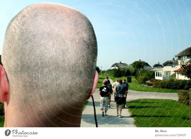 Kurzhaarschnitt Haus Hausbau Mensch Mann Erwachsene Kopf Himmel Park Wiese Wege & Pfade Brille Glatze bauen gehen Kommunizieren Wachstum nah grün Perspektive