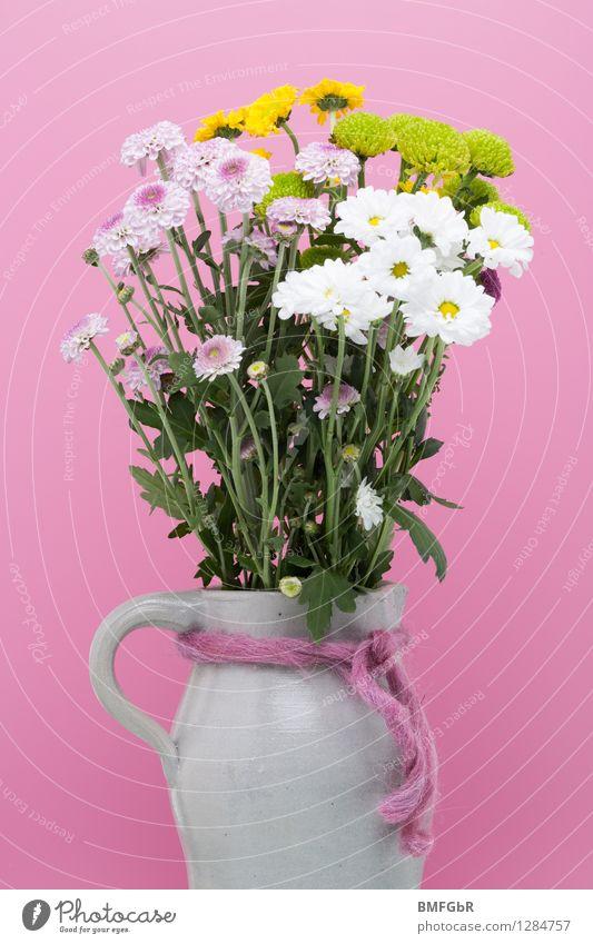 Bunt gefüllter Krug Pflanze schön weiß Blume Blatt gelb Frühling Blüte natürlich Stein rosa Wohnung Häusliches Leben frisch Dekoration & Verzierung Fröhlichkeit