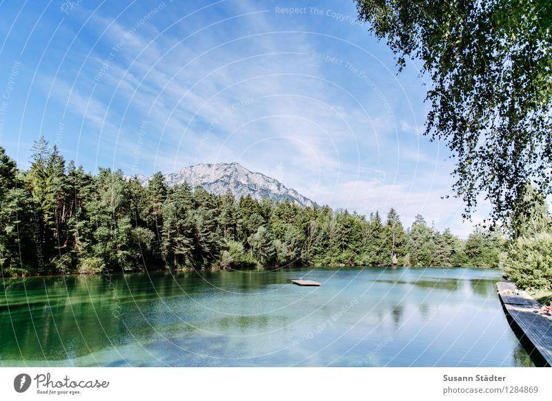 Waldbad Natur Horizont Schönes Wetter Baum Wiese Küste See Schwimmen & Baden Schwimmbad Badesee Badestelle Untersberg Österreich Salzburg Waldsee Wasser