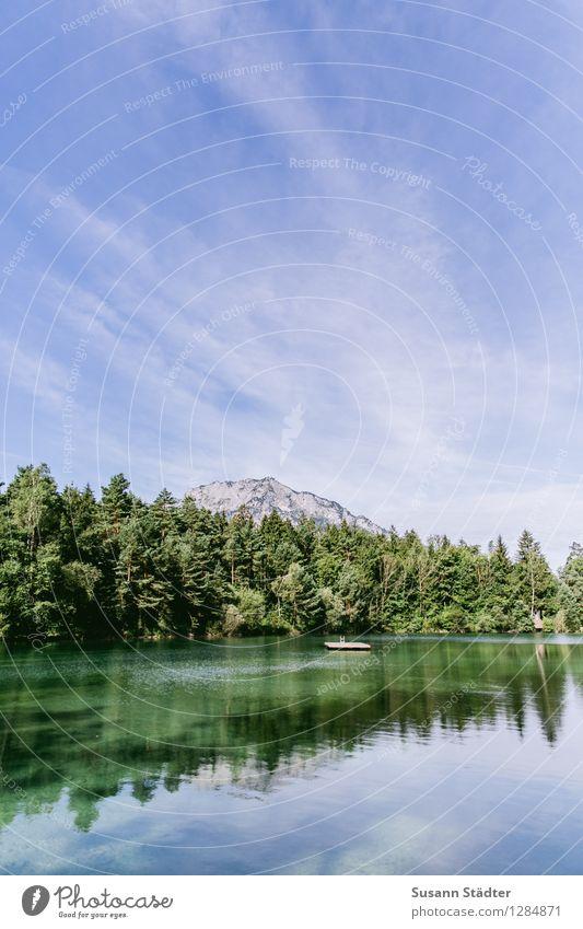 Waldbad Anif Felsen Alpen Berge u. Gebirge Gipfel stagnierend Plattform Waldsee Gebirgssee anif Bundesland Salzburg waldbad Badestelle Farbfoto Morgendämmerung