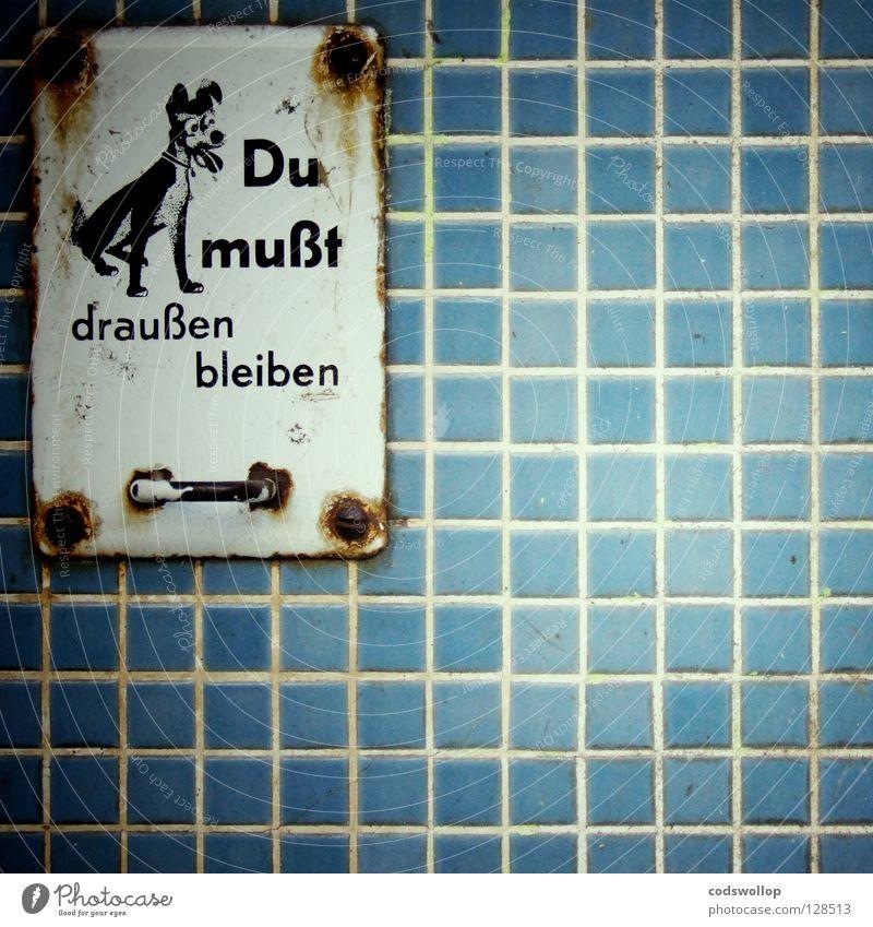 outsider Einsamkeit Hund Mauer Regel warten Schilder & Markierungen Hinweisschild Grafik u. Illustration Fliesen u. Kacheln Grenze Selbstportrait Image Emaille