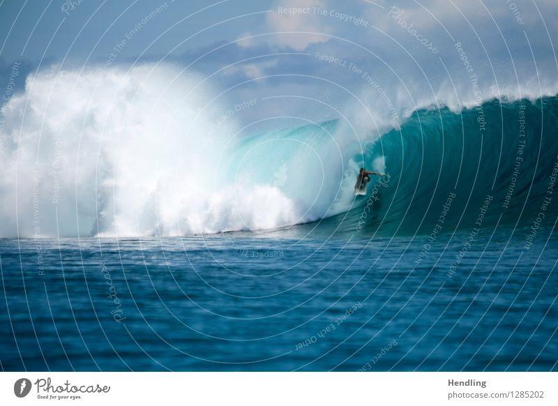 Surfing Indonesia II Mensch Himmel blau Wasser Meer Leben Wellen Insel gefährlich Klima Kraft Coolness violett rein Surfen Surfer
