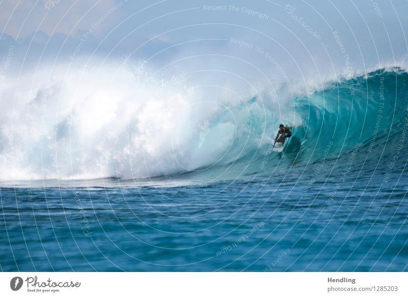 Surfing Indonesia Mensch Himmel blau Wasser Meer Leben maskulin Wellen Kraft Insel gefährlich Abenteuer Coolness violett rein Surfen
