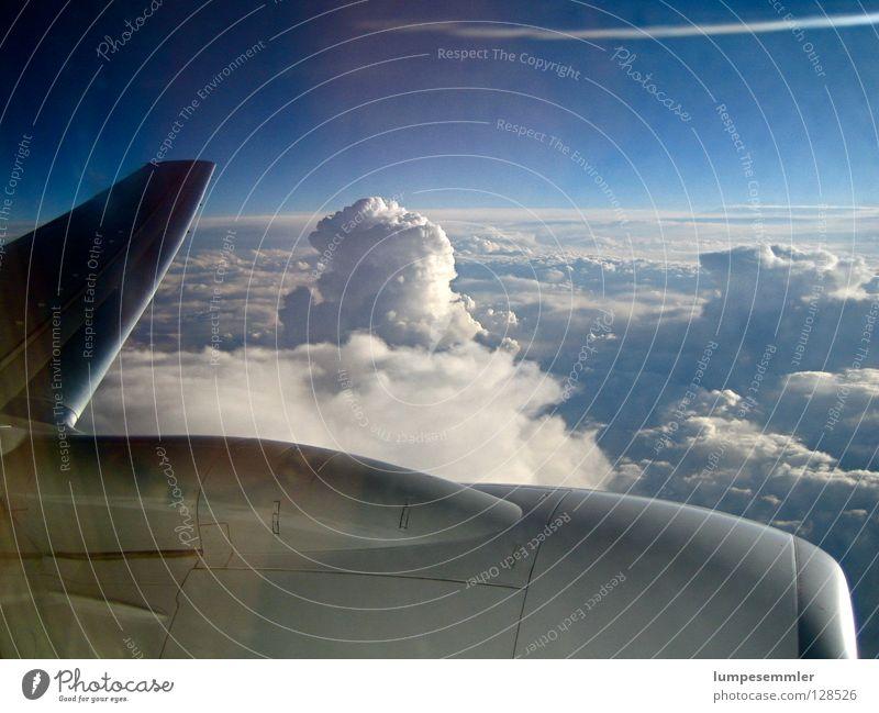 Escape Flugzeug Wolken Ferien & Urlaub & Reisen Triebwerke unterwegs Luft Himmel Luftverkehr frei Freiheit Flügel Niveau