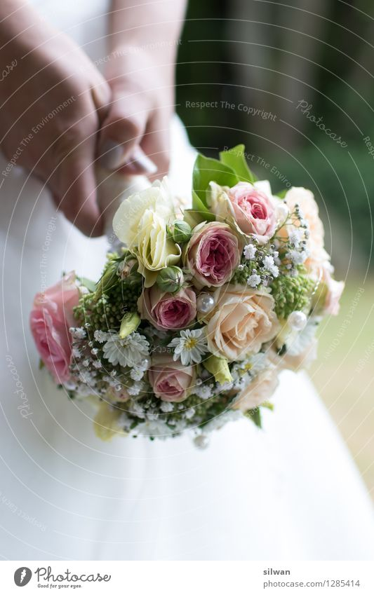 Brautstrauss schön weiß Hand gelb Wärme elegant ästhetisch Blühend einzigartig Hochzeit violett festhalten Rose Blumenstrauß Leidenschaft Duft