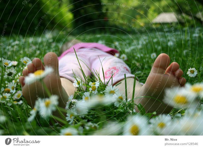 chillen Erholung ruhig Sommer Mädchen Fuß Frühling Wärme Wiese genießen liegen gelb grün rosa weiß bequem Frieden faulenzen Zehen Gänseblümchen sommerlich