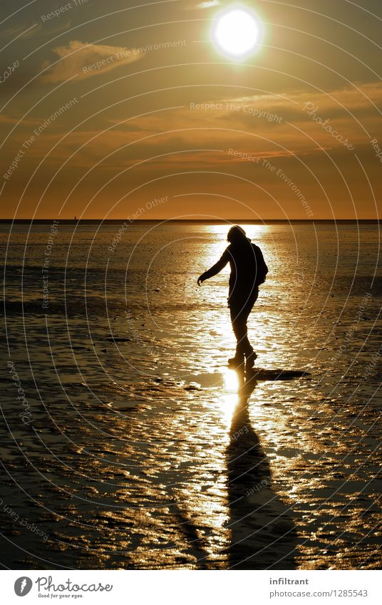 Abendspaziergang bei Ebbe Ausflug Sommer Sonne Strand Meer wandern feminin 1 Mensch Natur Sand Wasser Himmel Wolken Sonnenaufgang Sonnenuntergang Küste Nordsee