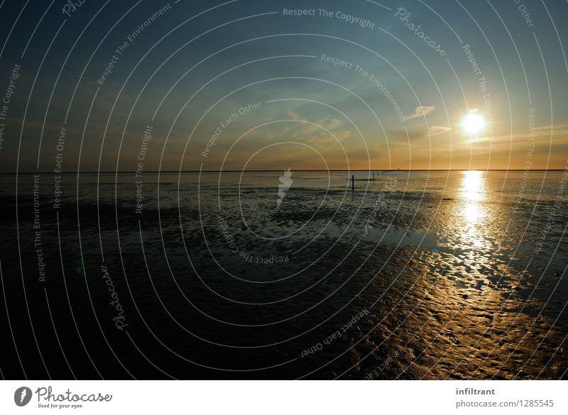 Sonnenuntergang und Ebbe Sommer Strand Meer Landschaft Himmel Horizont Sonnenaufgang Schönes Wetter Küste Nordsee natürlich blau braun gelb Romantik schön ruhig