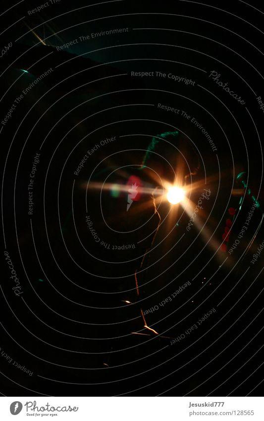 Salva schwarz Licht Konzert Gegenlicht gelb Nacht Gastronomie Show Musik Scheinwerfer Kontrabass Gitarre Abend Kneipe Rockmusik