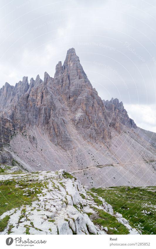 Paternkofel Himmel Natur Ferien & Urlaub & Reisen Sommer Landschaft Wolken dunkel Berge u. Gebirge Wiese grau Felsen Tourismus Erde wandern hoch Ausflug