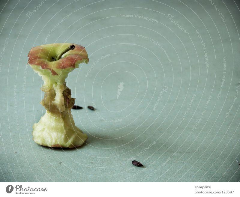 Schlankes Design Antenne Apfelbaum Bioprodukte Gesunde Ernährung Vitamin leer aufgegessen Müll Kompost dünn Problematik Gesundheit Stil fertig Ende Rest