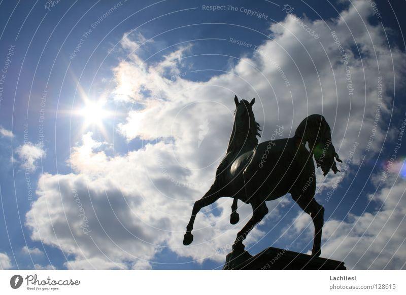 Welfenross elegant Freiheit Sonne Studium Kunst Tier Himmel Wolken Wärme Sehenswürdigkeit Wahrzeichen Denkmal Pferd Geschwindigkeit weich blau weiß