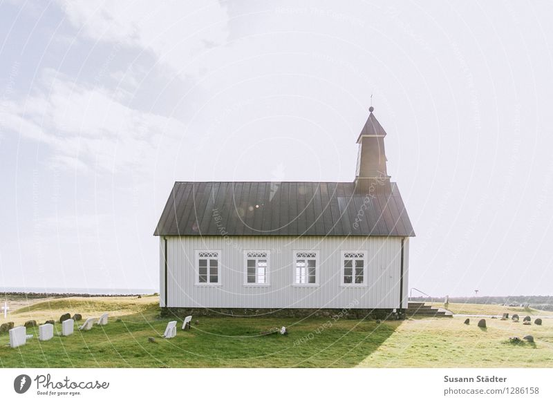 strandarkirkja Einsamkeit Fenster Wiese Gebäude klein Kirche historisch Dorf Ende Island Friedhof Kirchturm Wolkenhimmel Heiligenschein