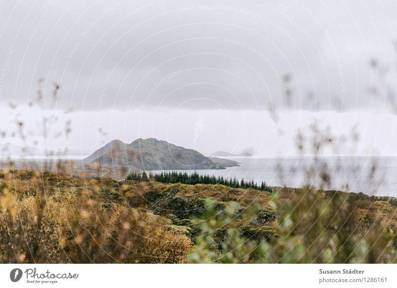 Pingvellirebene Erde Luft Wasser Himmel Wolken Bekanntheit Vergangenheit Island Nationalpark Grabenbruchzone Felsspalten pingvallavatn See Silfraspalte