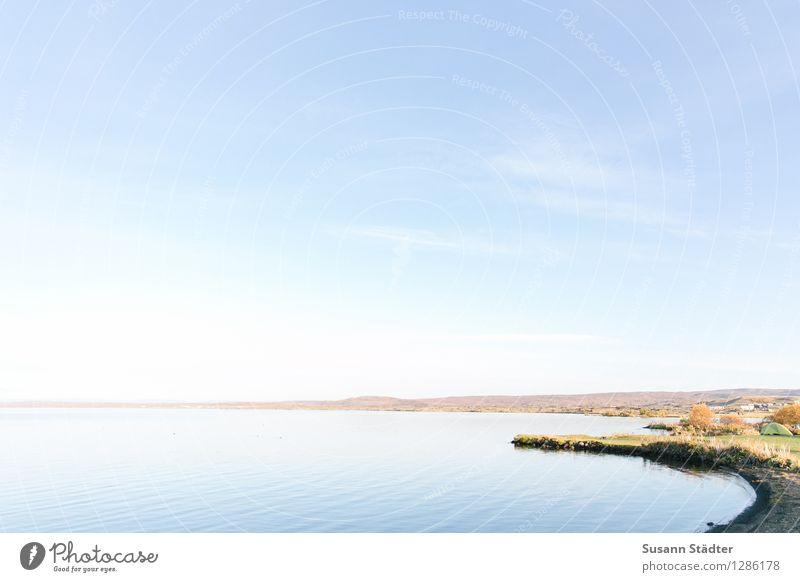 Lake Mývatn Segeln Natur Landschaft Schönes Wetter Wiese stehen Gewässer See Island Binnensee Campingplatz Zelt wasserkante ruhig wellenlos sanft Krafla