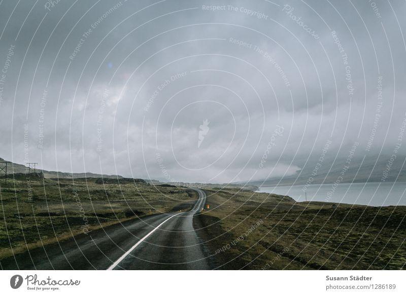 Iceland Landschaft Wolken Gewitterwolken Horizont Herbst Bucht Fjord dunkel natürlich Island Straße Wege & Pfade Moos Moosteppich wolkenverhangen Strommast