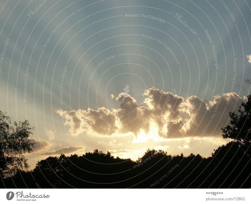 ...es schien mir so...! Wolken Baum Licht dunkel Sonne Schönes Wetter Beleuchtung Natur Himmel Schatten hell