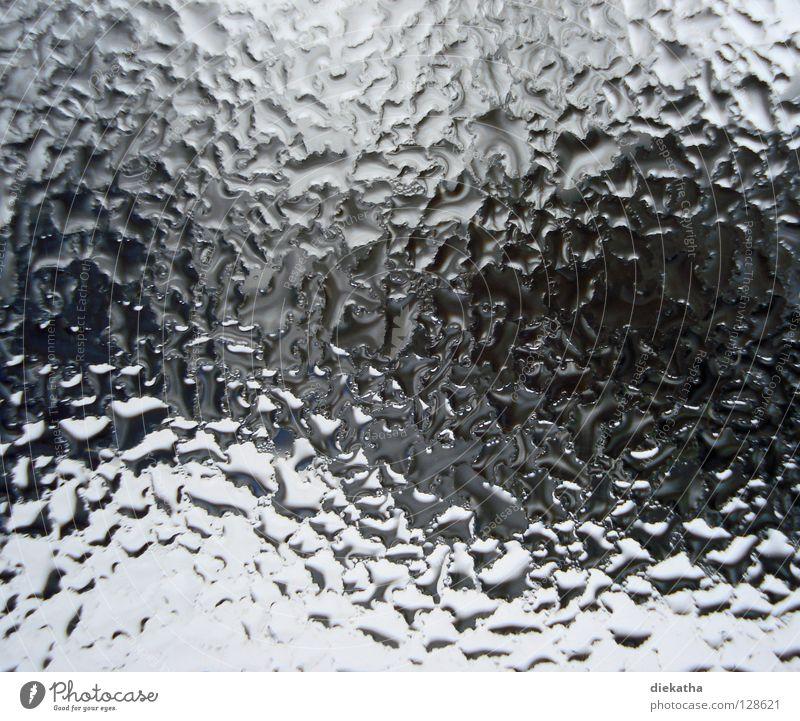 beschlagen² Fenster Wasserdampf kondensieren Kondenswasser durcheinander hauchen Atem kalt Physik Durchblick Haus Herbst Winter schlechtes Wetter Wellen