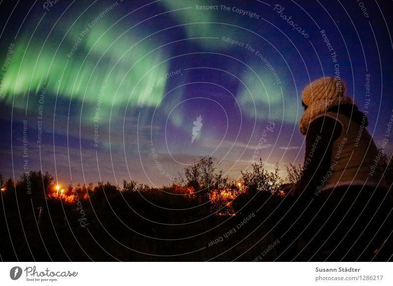 Iceland | northern lights Mensch Himmel feminin Körper beobachten Island Publikum Lichtspiel Lichtschein Norden Sauerstoff Naturphänomene Lichteinfall Nordlicht