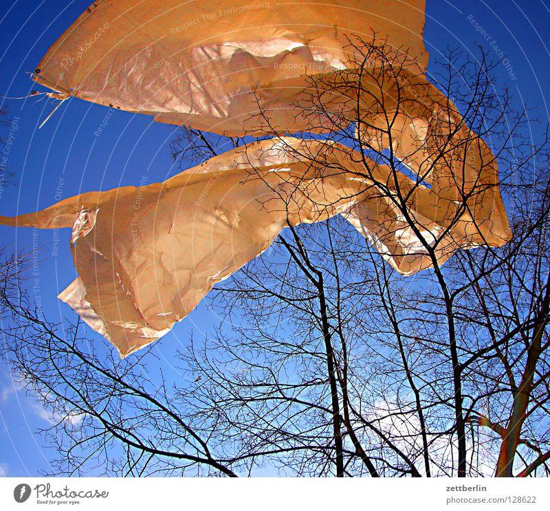 Frühling Fahne Abdeckung Bauplane Sturm flattern Wellen himmelblau Baum Freude Dekoration & Verzierung Schnur blaues band frühlingsopfer Wind wehen Bewegung